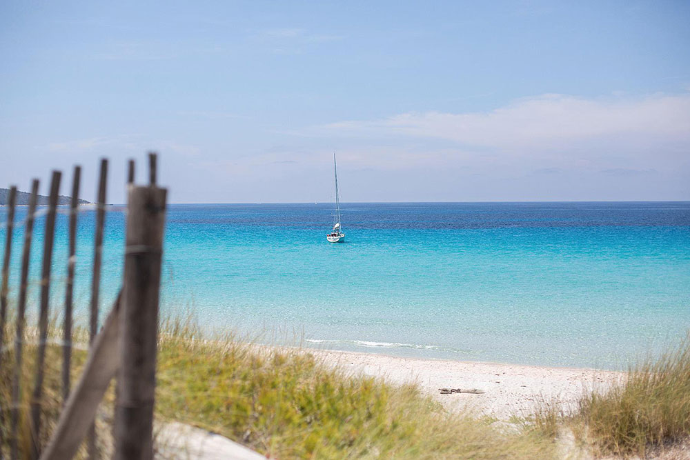 4X4 shuttle, visit of the beaches of Saleccia and Lotu, hiking between the two beaches